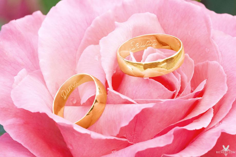 Die Ringe des Ehepaars liegen in einer Rose im Park am Schlosshotel Taunus