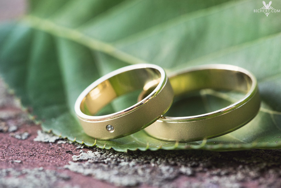 Hochzeitsaufnahmen von Ringen