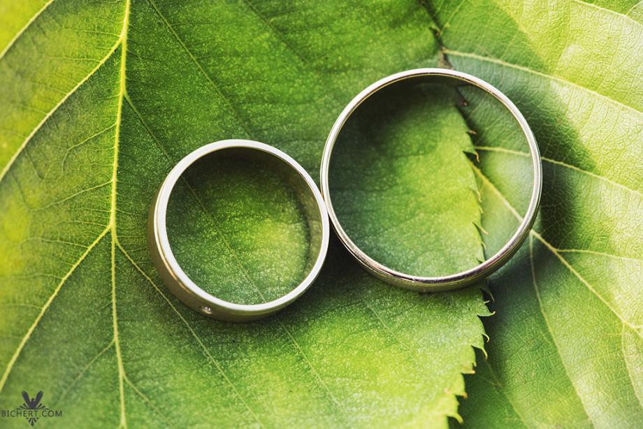 Hochzeitsfotograf Frankfurt Höchst - Ringbilder auf einem Blatt